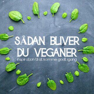 sådan bliver man veganer